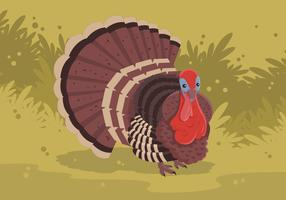 Wild Turkey Vector Illustration