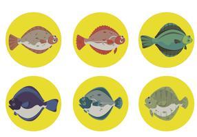 Platija de pescado con fondo de círculo Colección de vectores
