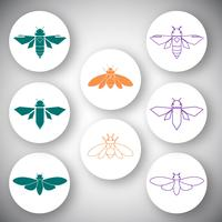Cicada icon set vector