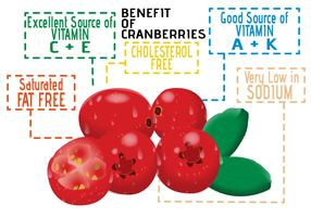 Benefícios de Cranberries