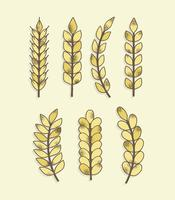 Gratis Textured Grain Vector