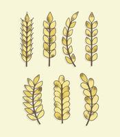 Vecteur de céréales texturé gratuit