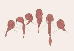 Plait Hair Brown Vector