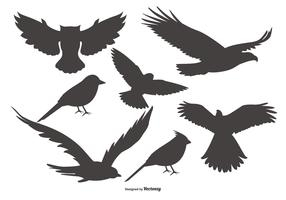 Vector Bird Shapes Collection