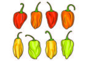 Set van Chili Habanero Vector