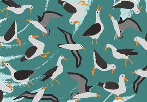 Albatros Vector patroon