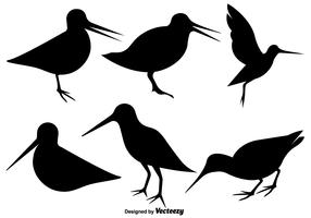 Vector Snipe Bird Flat Icons