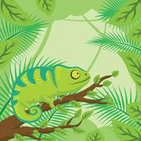 Chameleon With Forest Background