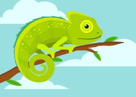Lindo camaleón
