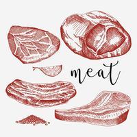 Kalfsvlees Set Hand getrokken Vector