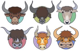 Vector Set Of Yak Head - Cartoon style
