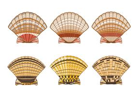 Set av kammusslor Shell Illustration isolerad på vit bakgrund