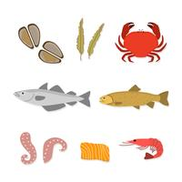 Vetores de frutos do mar planos