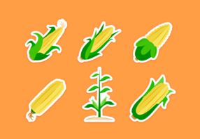 Corn Stalks Vector Pack
