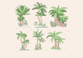 vector más palmier