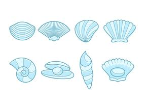 Collection de pétoncles de mer gratuit