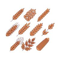 Free Grain Plants Icon Vector
