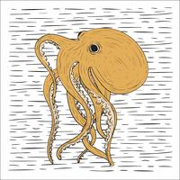 Hand Drawn Vector Octopus Illustration