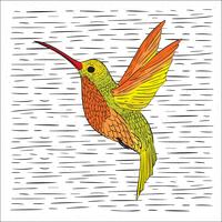 Handdragen Vector Hummingbird Illustration