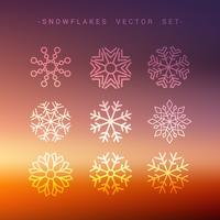 Sammlung von Schneeflocken im Winter