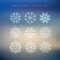 Schneeflocken-Sammlung