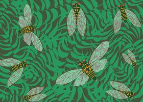 Cicada Insect Background