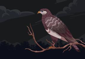 Buzzard Bird Sitting at a Branch Vector Illustration