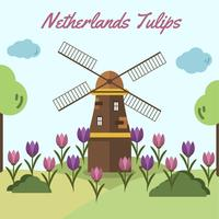 Netherlands Tulip Vector