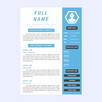 Iconic Corporate Resume Vectors