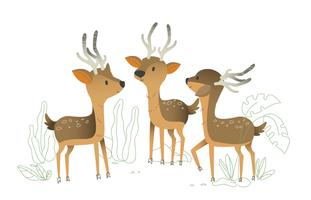 Cute Deer Character Vector Illustration