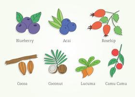 Super Foods Vector