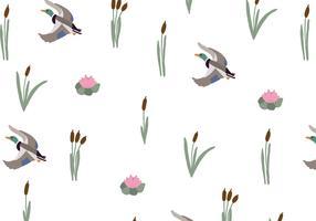Reeds & Ducks