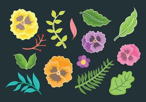 Pansy Vector Icons