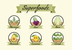 Super Foods Vector Illustrationer