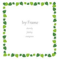 Square ivy frame.