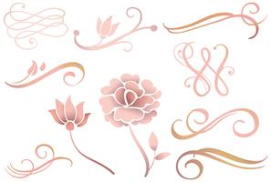 Rose Gold Ornaments Vectors