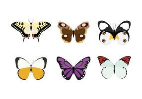 mariposa vector livre