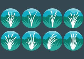 Gratuit Cattails Icon Vector