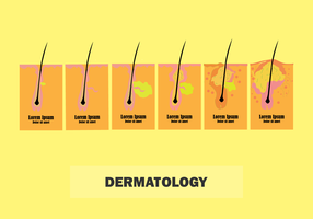 Skin Dermatology for Any Purpose vector