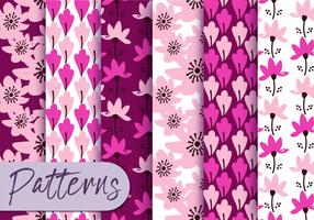 Pink Floral Pattern Set  vector