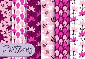 Conjunto de padrão Floral rosa