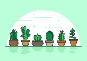 Succents Background Illustration