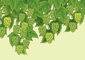 Hop plant vector achtergrond