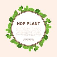 Hop Plant Vector Illustratie