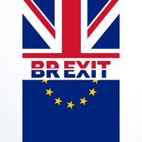great britian exit vote decision in brexit referendum