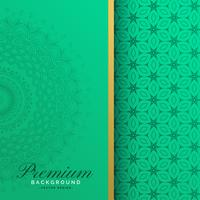 Premium vintage mandala pattern background