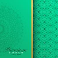Het patroonachtergrond van de premie uitstekende mandala