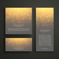 Diseño de tarjeta de banner de lujo con destellos de luz en diferentes tamaños.