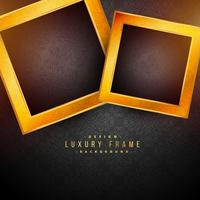 black background with two golden frames