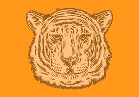 tiger head portrait vector